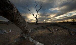 Planet Apocalypse by Ljubica Zec